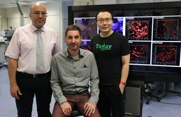 Research team members: (from left) Dr Hani El-Nezami, Dr Gianni Panagiotou and Dr Li Jun